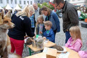 Holzmarkt18_3